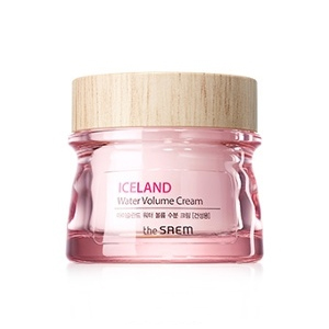 The Saem Iceland Water Volume Hydrating Cream For Dry Skin