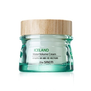 The Saem Iceland Water Volume Hydrating Cream For Oil Skin
